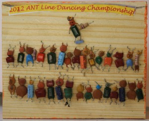 ANT LINE DANCING CHAMPIONSHIP