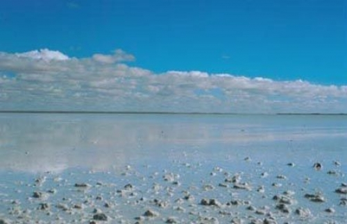 Lake Eyre South in flood