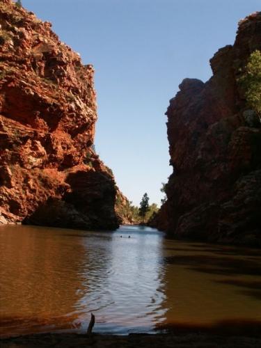 Waterhole, near Alice Springs, NT, Australia